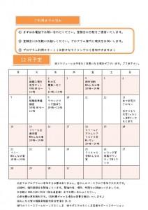Microsoft Word - YP12月チラシ_02